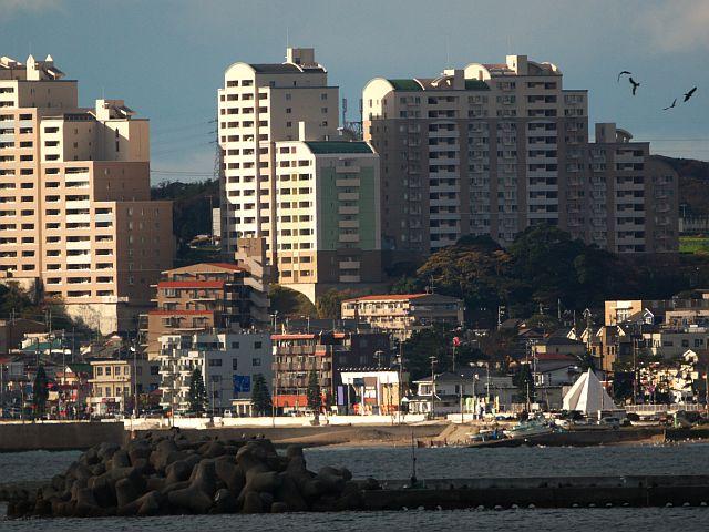 三浦海岸を望む